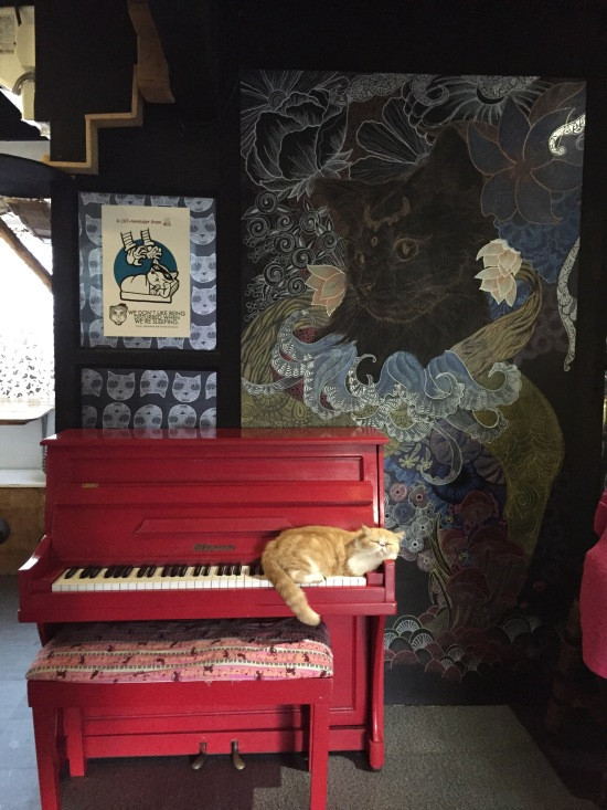 cat on a piano at Miao Cat Cafe